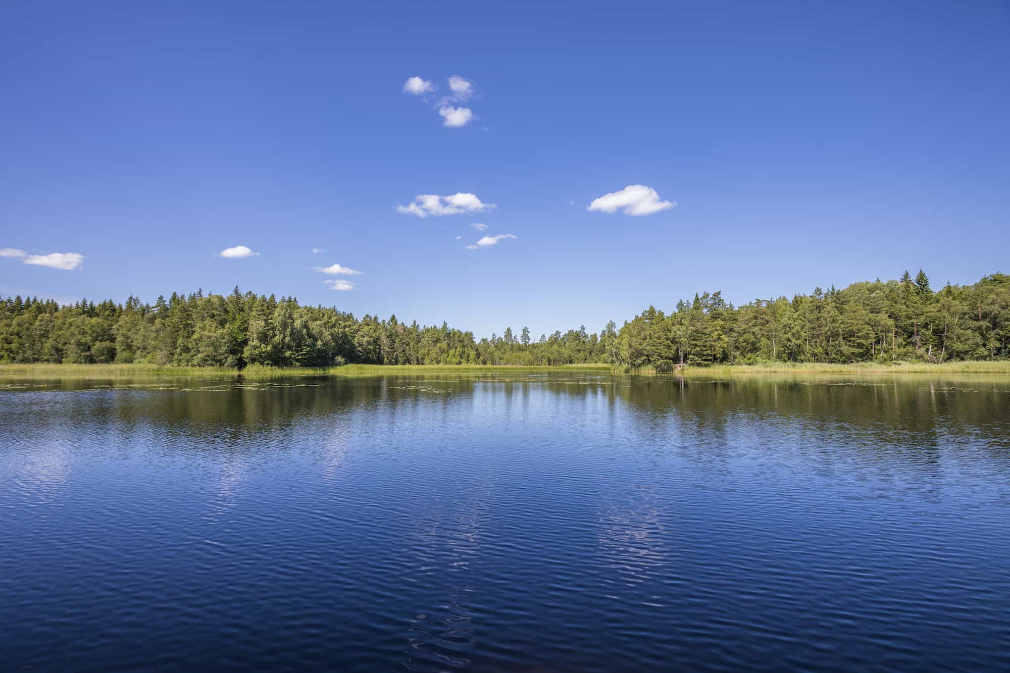 Photo of a Lake - Difference Between a Lake and a Pond